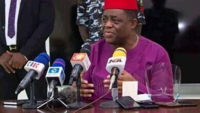 "Photo of Fani-Kayode Apologises to Journalist; Withdraws The Word ""Stupid"""