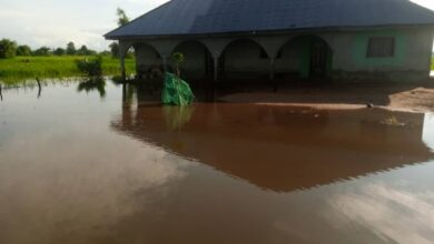 Photo of FLOOD: Pututa Community Residents in Lafiagi cry out