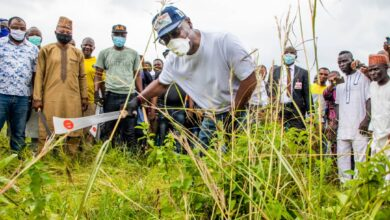 Photo of Governor AbdulRahaman joins grass cutting exercise, as school resumes on Monday