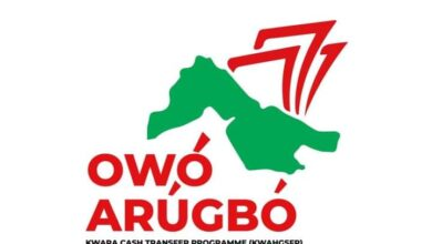 Photo of Kwara State Government Begins Distribution of N6000 Owo Arugbo