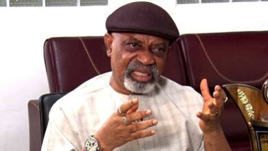 Photo of ASUU strike: I have three children in public universities, says Ngige